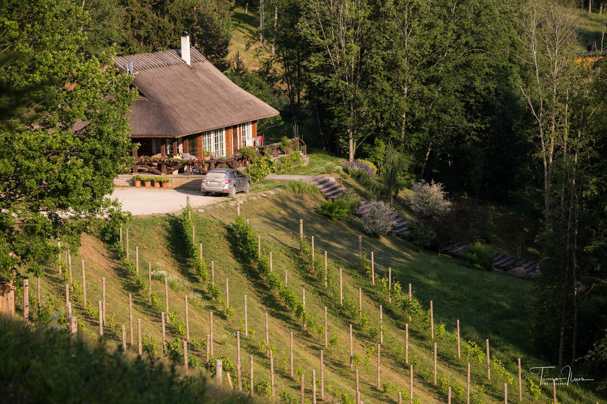 Murimäe Wine Cellar